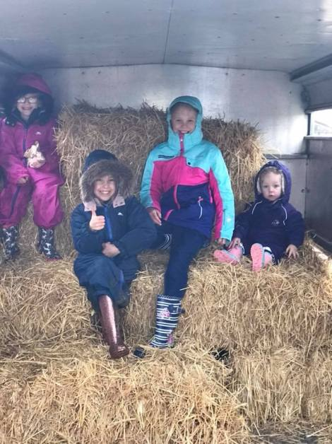 on the hay bales